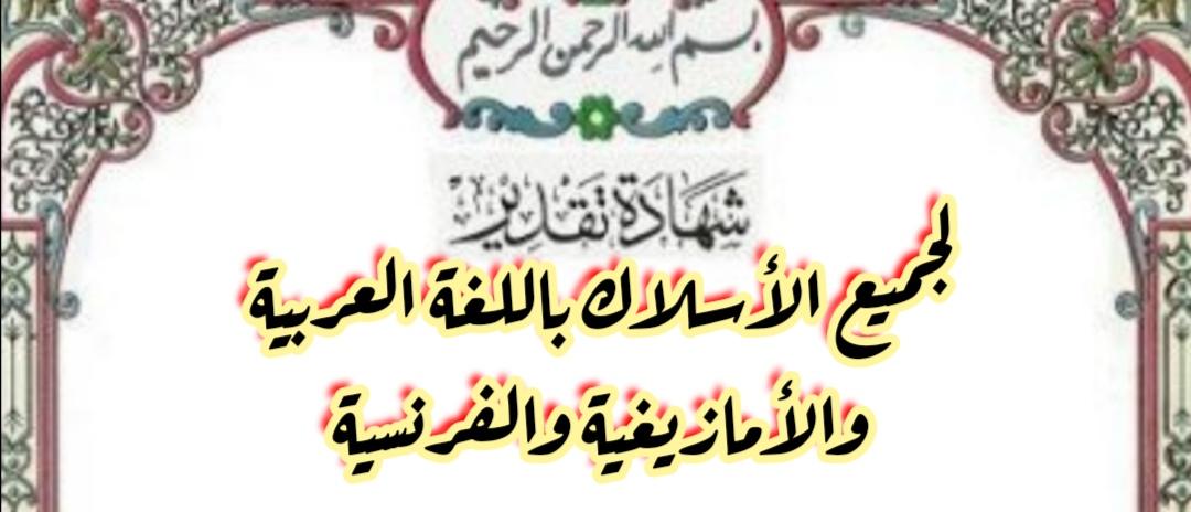 تحميل شواهد تقديرية لجميع الأسلاك باللغة العربية والأمازيغية والفرنسية
